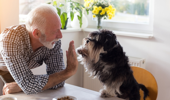 health benefits to pets for seniors