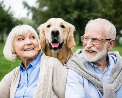 Benefits of seniors owning pets