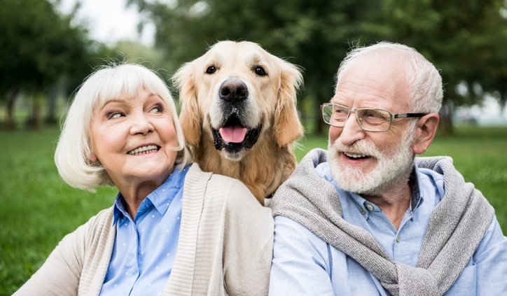 Benefits of seniors owning pets